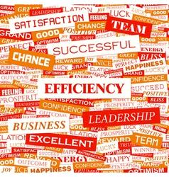 Efficiency vector