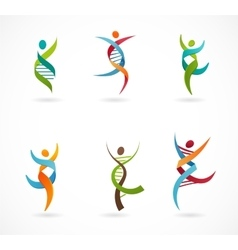 Dna genetic symbol - people man and woman icon vector