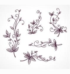 Floral decorative set for design vector