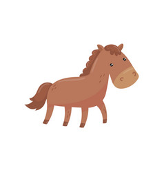 funny horse with short-haired brown coat mane and vector image