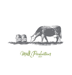 milk cow farm production bottle concept vector image