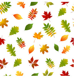 seamless pattern with set autumn yellow green red vector image