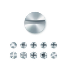 set head screws and bolts nails and rivet vector image