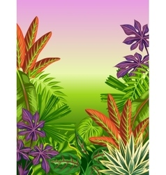 Tropical paradise card with stylized plants and vector image
