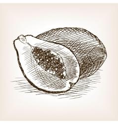 Papaya hand drawn sketch style vector image vector image