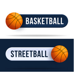 basketball or streetball toggle switch buttons vector image