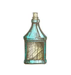 Color drawn blank bottle of scotch with cork cap vector