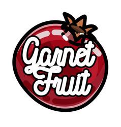 Color vintage fruit emblem vector