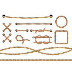 different ropes realistic marine round and square vector image