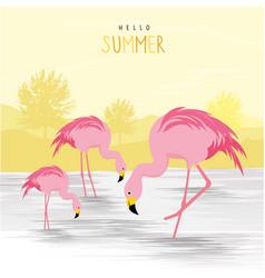 flamingo pink animal bird cartoon vector image