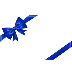 Gift bow tie vector