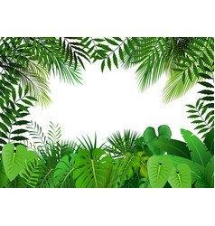 Jungle on white background vector