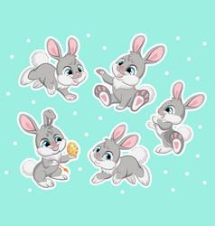set cute gray rabbits vector image