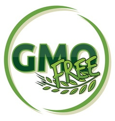 GMO FREE vector image