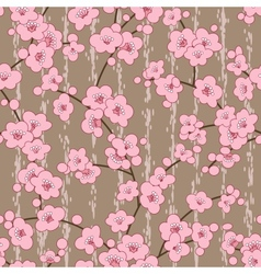 seamless cherry sakura blossom flowers pattern vector image