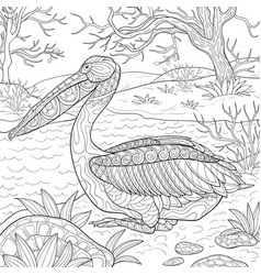 adult coloring bookpage a cute pelican on the vector image