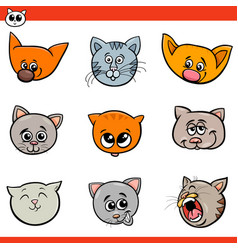 cartoon cats and kittens heads set vector image
