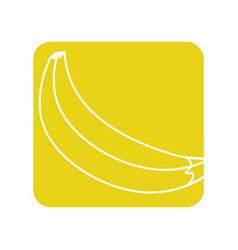 label delicious banana tropic fruits vector image