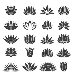 lotus icon botanical logo for beauty salon vector image