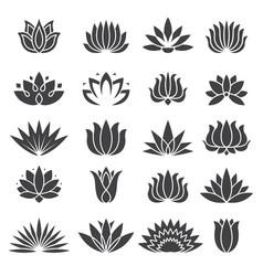 lotus icon botanical logo for beauty salon vector image