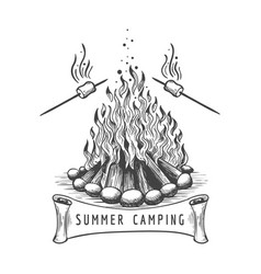 marshmallow roasting on campfire vector image