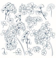 set flower shapes for design vector image