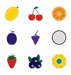 Types of fruit icons set flat style vector image