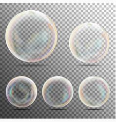 realistic soap bubbles on transparent background vector image