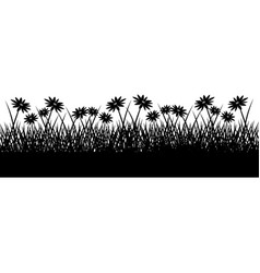 wild herbs and flowers vegetation silhouette vector image