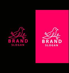 abstract bird logo design template linear style vector image