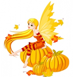 autumn fairy on the pumpkin vector image