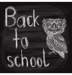 back to school chalk drawn background vector image