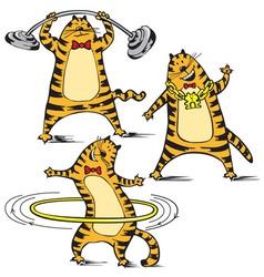 Cartoon of cat vector image
