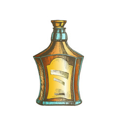 Color drawn scotch bottle with style cork cap vector