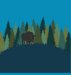 Forest landscape with bison forest of fir trees vector
