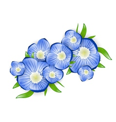 Forget-me-not Flower vector image