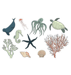 hand drawn sea life set vector image