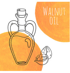 Hand drawn walnut oil bottle with orange vector