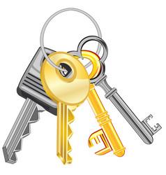 Ligament keys from doors vector
