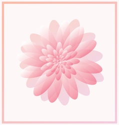 Pink abstract flower vector image