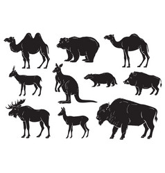 Collection of wild animals on white background vector