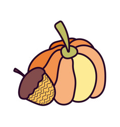 pumpkin and acorn on white background vector image