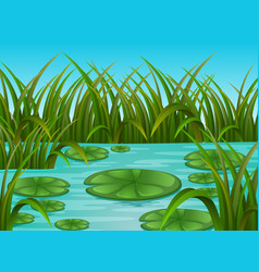 river scene and water lily in a beautiful nature vector image