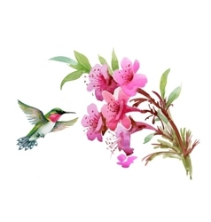 Watercolor wild exotic birds on flowers and twigs vector image