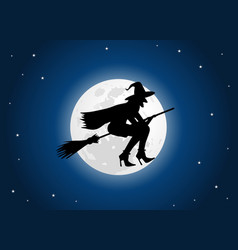 witch moon vector image