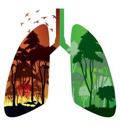 Amazon rainforest fire vector