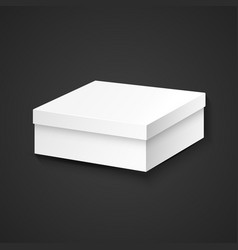 blank package box mockup vector image