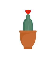 cactus flower icon flat style vector image