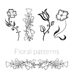 Collection stylish black white flowers vector image