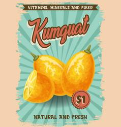 Kumquat fruit market price agriculture vector